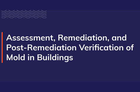 Assessment Remidiation Verification border