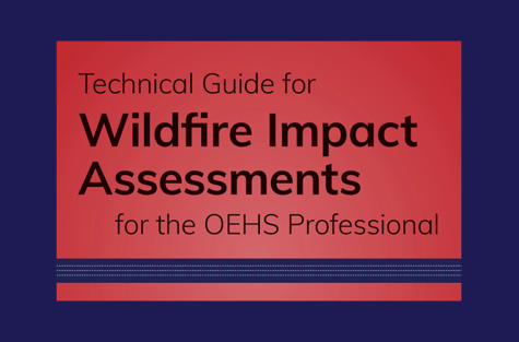 Wildfire Impact Assessment border